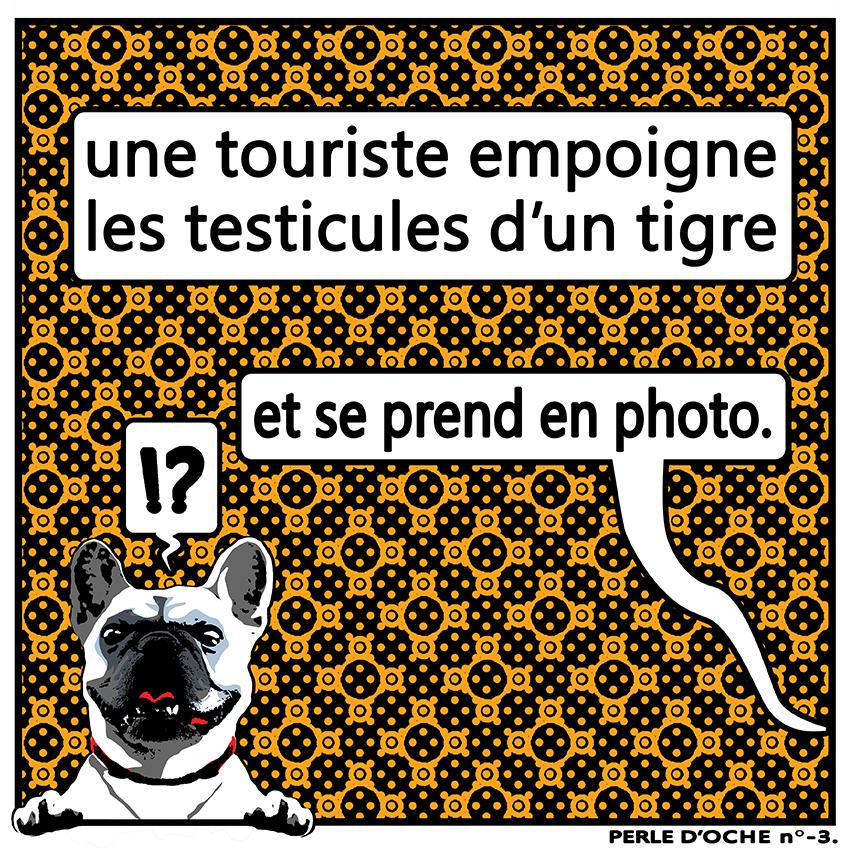 une touriste empoigne les testicules d'un tigre et se prend en photo