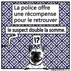 oche 004 police