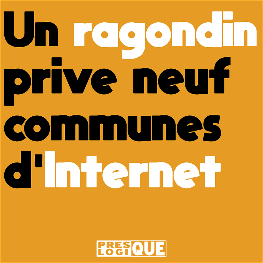 Un ragondin prive neuf communes d'Internet