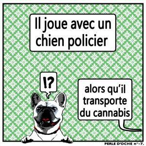 oche 007 chien policier